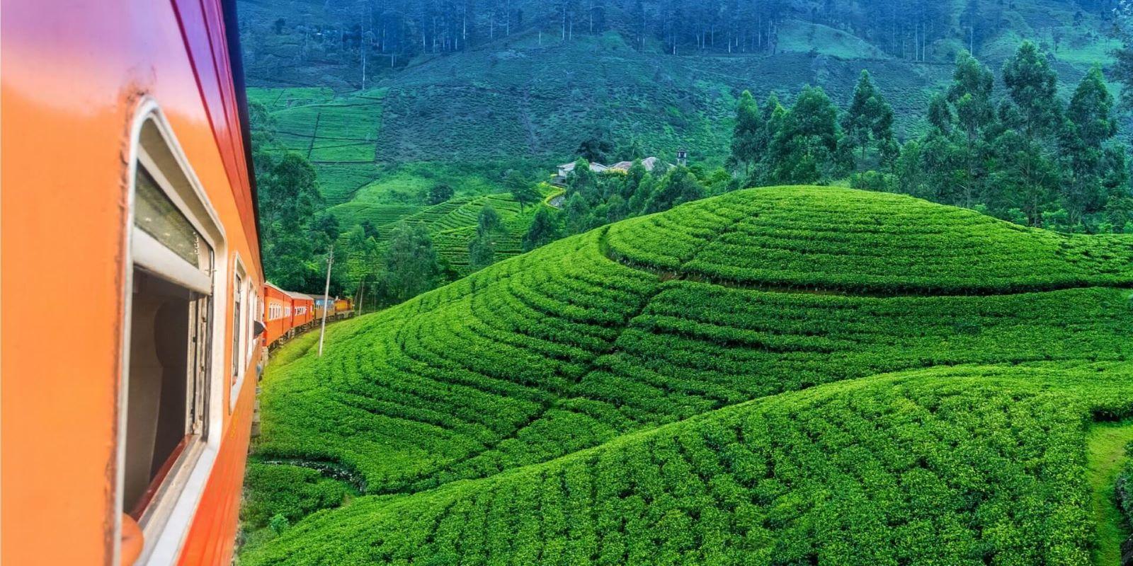 srilanka-alt